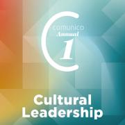 Camunico annual cover